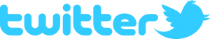 Twitter logo - e-Syndicate Network